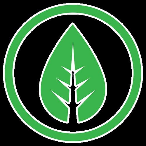 Ecofriendly icon